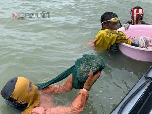 ศีลธรรมไปไหน! รองผู้ว่าฯ สุราษฎร์ฯ ด่าประมงพื้นบ้านหน้าด้านเข้าไปจับหอยในคอกผู้ประกอบการ