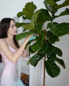 """""""มาริโอ้"""" ครวญเดือดร้อนแล้ว """"ญาญ่า"""" หยิบจับต้นไม้อะไรก็แพง พี่ซื้อตามไม่ไหว"""