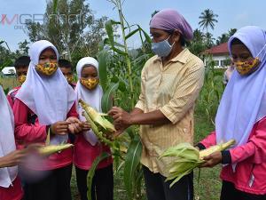 ร.ร.บ้านทุ่งพัฒนาจัดสรรพื้นที่เกษตรให้ผู้ปกครองอาสาปลูกผักเลี้ยงสัตว์หารายได้พัฒนาโรงเรียน
