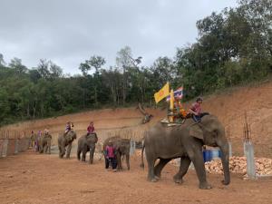 พระนำชาวบ้านบนดอยแม่แจ่มแห่เทียนพรรษาบนหลังช้าง9เชือกถวายวัด