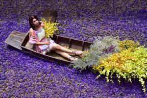 """เนรมิต """"ชุมชนตลาดเก่าหัวตะเข้"""" เติมสีสันด้วยดอกไม้สะพรั่ง เริ่มวันนี้-4 ส.ค.63"""