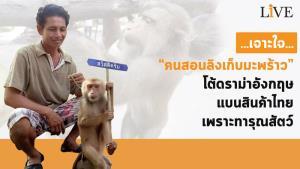 """เจาะใจ """"คนสอนลิงเก็บมะพร้าว"""" โต้ดรามาอังกฤษแบนสินค้าไทย เพราะทารุณสัตว์"""