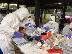 ไทยเนื้อหอม!! สื่อหลายชาติเกาะติดผลงานวิจัยหาไวรัสโควิด-19 ในค้างคาวมงกุฎ  23 ชนิด