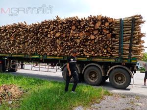 ตร.ร่วม ปทส.พัทลุงจับกุมรถบรรทุกพ่วงขนไม้ยางพาราโดยไร้อุปกรณ์ป้องกัน