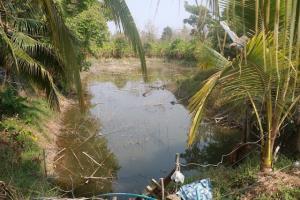 สระน้ำที่ขุดไว้ในพื้นที่บ้าน รองรับน้ำฝน เมีน้ำใช้ตลอดเเม้ในยามเเล้ง