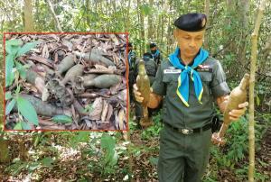 ผงะพบอาวุธสงครามอื้อ! ทุ่นระเบิดสังหาร-กระสุนปืนไร้แรงสะท้อน ซุกป่าชายแดนเมืองช้าง