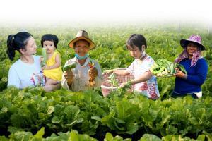 กรมการพัฒนาชุมชน น้อมนำแนวพระราชดำริ กรมสมเด็จพระเทพฯ สร้างความมั่นคงทางอาหาร