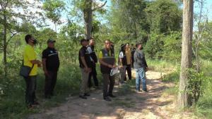เผยโจรลอบตัดไม้ป่าชุมชนฯ กว่า 3,000 ต้นทำเป็นแก๊ง สังคมกังขาหน่วยงานเกี่ยวข้องมีเอี่ยว
