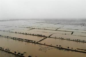 พื้นที่กักเก็บน้ำท่วมในอำเภอเฉวียนเจียว มณฑลอันฮุย ถือเป็นพื้นที่กักเก็บน้ำท่วมแห่งหลักของประเทศจีน ภาพวันที่ 19 มิ.ย.2020 (ภาพซินหัว)