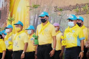 """""""กรมทะเล"""" จับมือ จ.ภูเก็ต ชวนจิตอาสา 2,500 คนร่วมปลูกป่าชายเลนเฉลิมพระเกียรติฯ ร.๑๐ พร้อมฉลองวันป่าชายเลนโลก พลิกฟื้นคืนความสมบูรณ์ระบบนิเวศ"""
