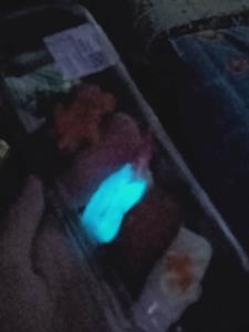 ตะลึง! พบซูชิเรืองแสงซื้อจากห้างดัง วอนหน่วยงานตรวจสอบ