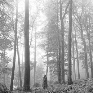 ปกอัลบั้ม Folklore - เทย์เลอร์ สวิฟต์