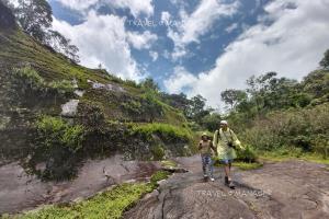 เส้นทางเดินศึกษาธรรมชาติบนภูหินร่องกล้า