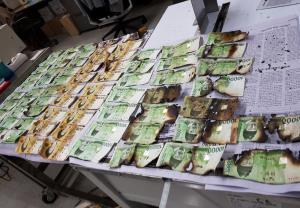 ธนาคารกลางเกาหลีใต้ (BOK) เผยแพร่ภาพธนบัตรซึ่งชำรุดเสียหายจากการถูกนำไปอบในไมโครเวฟ (Photo – AP)