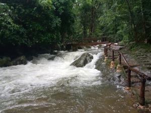 แม่น้ำเพชรมีน้ำเพิ่มขึ้นหลังจากมีฝนตกหนัก แต่ยังไม่วิกฤต