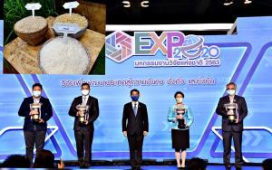 """กรมการข้าว – มทร.ธัญบุรี คว้ารางวัล Platinum Award ในงาน """"มหกรรมงานวิจัยแห่งชาติ 2563"""""""
