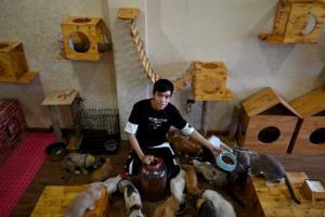 ชวนไปดูคาเฟ่แมวในฮานอยสุดน่ารักประทับใจ ชุบชีวิตน้องเหมียวบาดเจ็บไร้บ้าน