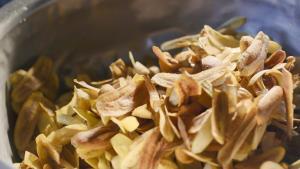 """""""กล้วยเมืองลุง"""" จากวิสาหกิจชุมชนยกระดับสู่เซเว่นฯ กระจายไปกว่า 1,500 สาขา ตั้งเป้าบุกตลาดต่างประเทศ"""