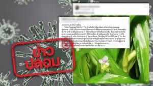 ข่าวปลอม! น้ำปั่นใบสดหญ้าปักกิ่ง รักษามะเร็งน้ำเหลือง