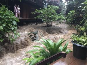 """""""แม่กำปอง"""" และใกล้เคียงรวม 5 หมู่บ้านโดนน้ำป่าซัดดินสไลด์หลังฝนตกหนัก"""