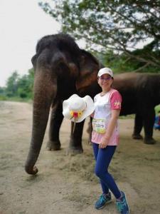 """กูรูช้างไทยเปิดเวทีเสวนา """"ก้าวใหม่ช้างไทยหลังภัยโควิด-19"""" ฝ่าวิกฤตช้างตกงาน"""