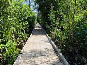 เอกชนเมืองตราดเสนอรัฐเร่งเปิดค้าชายแดน สร้างถนนและอ่างเก็บน้ำบนเกาะช้างใน ครม.สัญจร