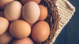 รู้อย่างนี้แล้ว ยังไม่ชอบกินไข่ ก็ตัวใครตัวมัน! / พลโทนายแพทย์ สมศักดิ์ เถกิงเกียรติ