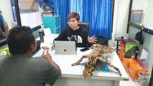 พญาเสือรวบหนุ่มเพชรบุรีโพสต์ขายซากสัตว์ป่าทางออนไลน์
