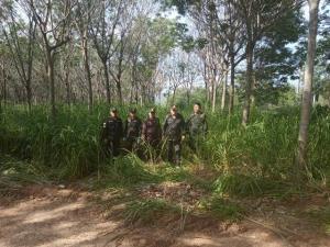 ป่าไม้ยึดเรียบ! สวนยางแปลงใหญ่ร่วม 300 ไร่ จับพิกัดพบรุกป่าสองฝั่งลำน้ำแควน้อยชัด