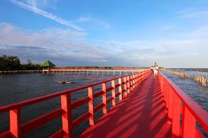 สะพานแดง จุดชมโลมาใกล้กรุง