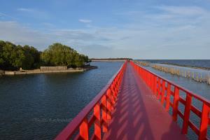 สะพานทอดยาวสุดตา