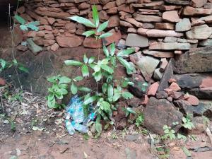 รมต.ท็อป ประกาศปิดถ้ำนาคา หลังธรรมชาติถูกทำลาย ฉุนนทท.มือบอนเที่ยวดีๆ ไม่ได้ก็อย่ามาเที่ยว