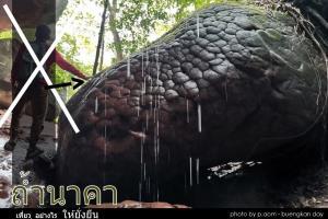 ท่องเที่ยวอย่างมีจิตสำนึก อย่าจับสัมผัสหินและธรรมชาติที่มีความเปราะบางที่ถ้ำนาคา (ภาพ : เพจ Buengkan day)