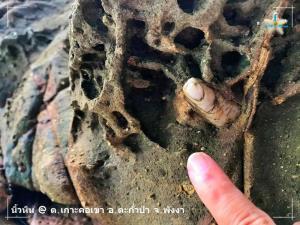 หินนิ้วมือ บนเกาะคอเขา