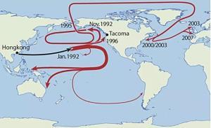 """ตุ๊กตาเป็ดตกน้ำ! หายลงทะเลตั้งแต่ปี 1992 สะท้อน """"ขยะทะเล"""" พัดไปไกลทั่วโลก"""