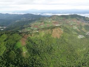 'ป่าทับที่คน คนทับที่ป่า' แก้อย่างไร? ปมเรื้อรังการถือครองที่ดินในป่าอนุรักษ์