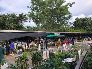 """ปทุมธานี! ชวนเที่ยวงาน """"เกษตรวิถีไทย ศาสตร์และศรัทธา"""" 19-20 ก.ย.นี้ ที่พิพิธภัณฑ์การเกษตรฯ"""