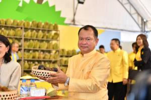 พาณิชย์จับมือกลุ่มสยามพิวรรธน์ จัดงานเทศกาลผลไม้ไทยใจกลางเมือง ดันไทยเป็นมหานครแห่งผลไม้เมืองร้อนของโลก