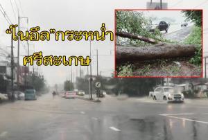"""""""โนอึล"""" กระหน่ำศรีสะเกษโค่นต้นไม้ล้มขวางถนน 24 เส้นหลักอีสานใต้น้ำท่วมทางศรีสะเกษ-อุบลฯ"""