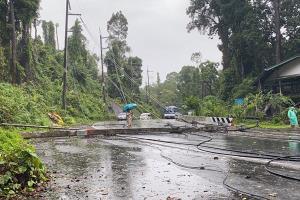 """""""โนอึล"""" แผลงฤทธิ์ ฟาดใส่ต้นไม้ขนาดใหญ่ล้มทับเสาไฟฟ้า ทำไฟดับทั้งเขาหลัก รถผ่านไปมาไม่ได้"""