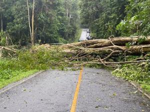 """อช.เขาใหญ่ ประกาศปิดชั่วคราว หลังพายุ""""โนอึล""""ถล่ม ทำน้ำท่วม-ต้นไม้ใหญ่ล้มขวางถนน"""