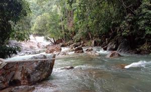 """นักท่องเที่ยวแห่ลงเกาะช้างหลัง """"โนอึล"""" พ้นไทย ด้านท้องถิ่นเร่งฟื้นฟูพื้นที่"""