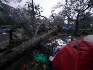 """นักกางเต็นท์โวย """"อุทยานฯ ภูสอยดาว"""" เจอพายุโนอึลทำต้นไม้ล้ม-บาดเจ็บ ไม่มีความพร้อมรับมือ"""