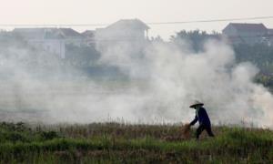 ฮานอยออกคำสั่งห้ามประชาชนเผาฟาง-ขยะมูลฝอย ลดมลพิษตั้งแต่ปีหน้า
