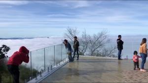 """ประทับใจกันทั่ว! นักท่องเที่ยวขึ้น """"ดอยอินทนนท์"""" สุดสัปดาห์ชมทะเลหมอกปลายฝนรับลมหนาว"""