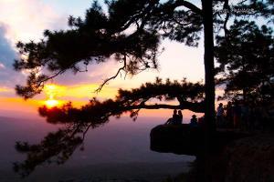 """""""ภูกระดึง-สิมิลัน-ทีลอซู"""" นำทัพ 10 แหล่งธรรมชาติสุดเจ๋ง พร้อมเปิดให้เที่ยวเดือนตุลาคม"""