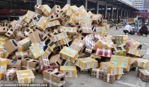 ภาพช็อก! สัตว์เลี้ยง 4,000 ตัว ตายคากล่องพัสดุในจีน เชื่อสั่งซื้อทางออนไลน์ (ชมคลิป)