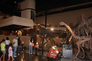 บรรยากาศการท่องเที่ยวพิพิธภัณฑ์สิรินธร อ.สหัสขันธ์ จ.กาฬสินธุ์ นักท่องเที่ยวต่างพาบุตรหลานมาชมซากฟอสซิลไดโนเสาร์ จำนวนมาก