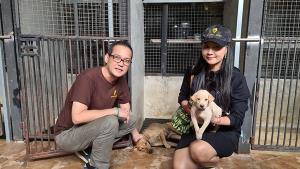 คนสวยใจบุญ! นักธุรกิจเมืองสัตหีบควักเงิน 10,000 บาท ช่วยสุนัขแม่ลูกอ่อนถูกรถชน