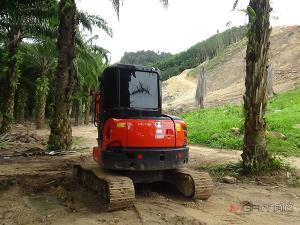 ค้นหาไม้ซุงถูกลอบตัดในป่าสงวนฯ ล่าสุดพบถูกซุกในสวนยาง-ปาล์มของผู้นำชุมชน